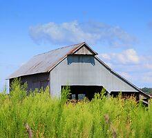 Rural America by Grinch/R. Pross