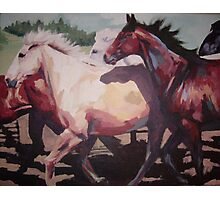 Stampede Photographic Print