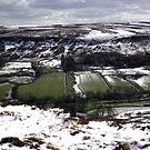 Farndale - North Yorks Moors by Trevor Kersley