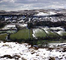 Farndale - North Yorks Moors by Trevor Kersley