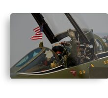The Patriot Metal Print