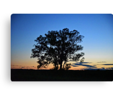 Silverdale Sunset (2), NSW Canvas Print
