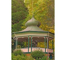 Pagoda in the Park Photographic Print