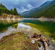Galbenu lake in Romania by naturalis