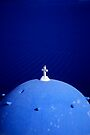 Blue by Walter Quirtmair