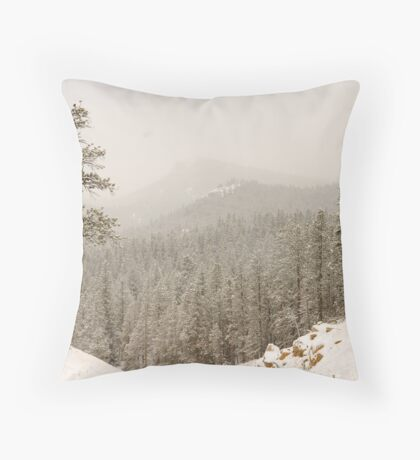 Mountain Pass Throw Pillow