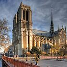 Notre Dame Cathedral - Paris by seabird
