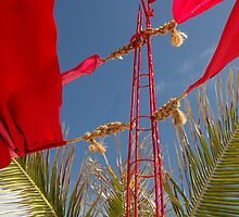Red Flag by victoriabarber