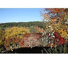 Autumn colours. Photographic Print