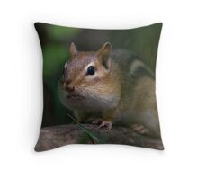 chip or dale? Throw Pillow