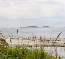 Sambro Island Lighthouse by HALIFAXPHOTO