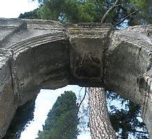 Roman remains must be older than that powerful pine tree... by Larasolnishko