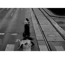 Dog Photographic Print