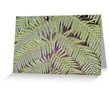 Lacy Tree Greeting Card