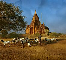 Memories of Bagan by louise