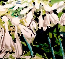 Hosta Blooms by Jim Phillips