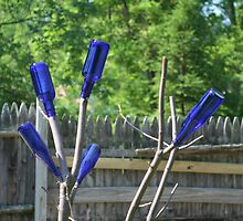 The Bottle Tree by Voyager398