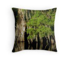 Louisiana swamp Throw Pillow