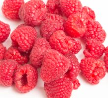 Red Raspberries on White Sticker