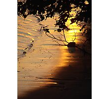 Afternoon Glow Photographic Print