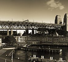 Sydney Harbour Bridge by Matt  Lauder