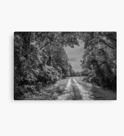 On A Country Road: IR Canvas Print