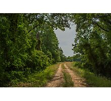 On A Country Road Photographic Print