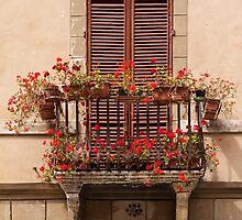 Sienese Window by Julian Elliott