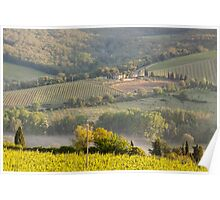 Chianti Vineyards Poster