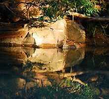 Mirror Image - Dingo Creek NSW by Bev Woodman