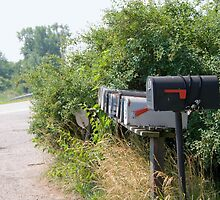 Rural Mail Boxes by Joy  Rector