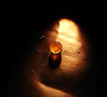 Embryo by AnnaV