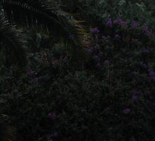 purple rain by spiritedwings