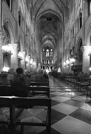 inside notre dame by J.K. York