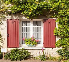 French Window by Julian Elliott