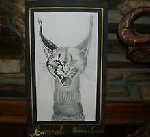 Caracal by Roxanne Cross