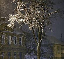 Night Snow Tree by fine