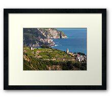 Cinque Terre vineyards Framed Print