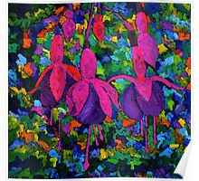 Fuschia flowers Poster