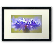 - Purple Crown - Framed Print