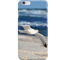 Gull and Gulf iPhone Case/Skin