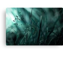 With Beauty, Comes Loss Canvas Print