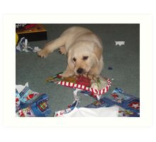 Christmas chews Art Print