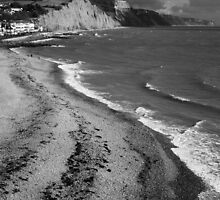 SIDMOUTH SHORELINE by Michael Carter