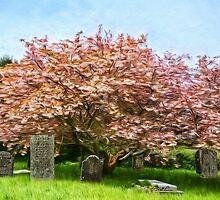 St Levan Churchyard - Impressions by Susie Peek