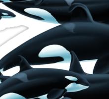 California Orcas Sticker