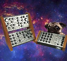 Pug on synthesizer in Space by nsir