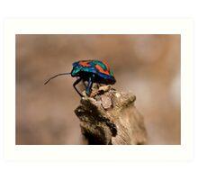 Cotton Harlequin Bug on a Log Art Print
