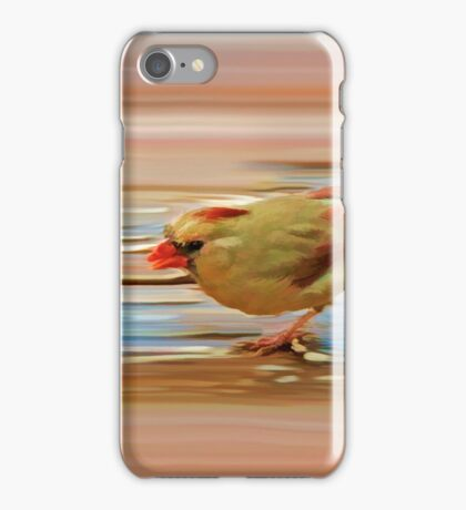 Global Climate Change iPhone Case/Skin