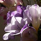 Pale Watercolor Purple - 1000 views as of 1/27/15 by Fay270
